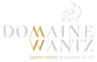 logo-Wantz